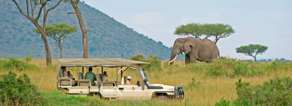 Kenya Luxury Safaris from Nairobi